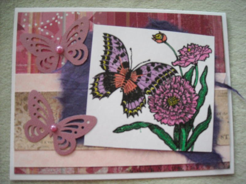 Butterflies and Flower Collage