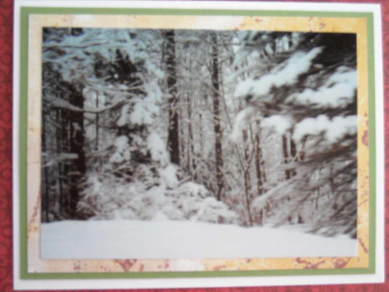 Winter's Serenity