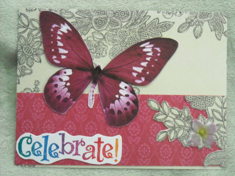 Celebrate the Butterfly