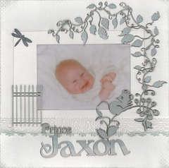 Prince Jaxon...for jaxon