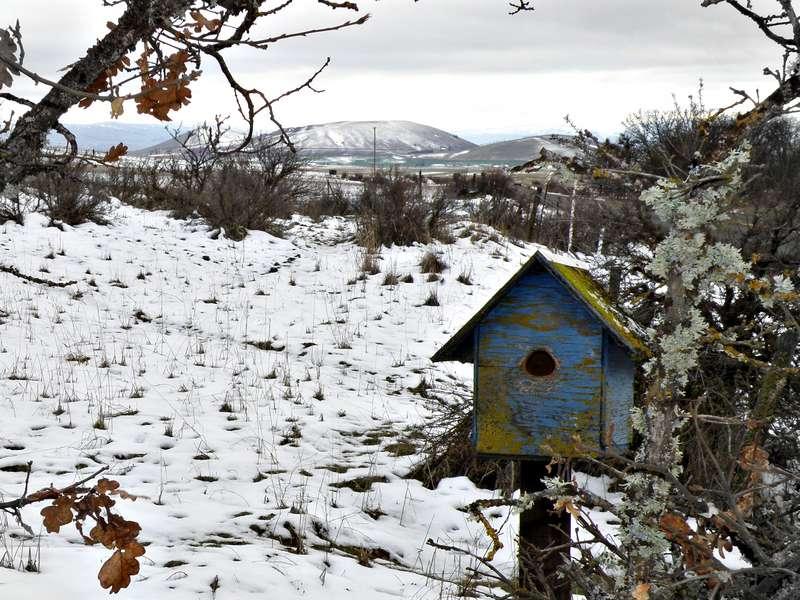 MINI JAN...POD...8 Blue...Birdhouse
