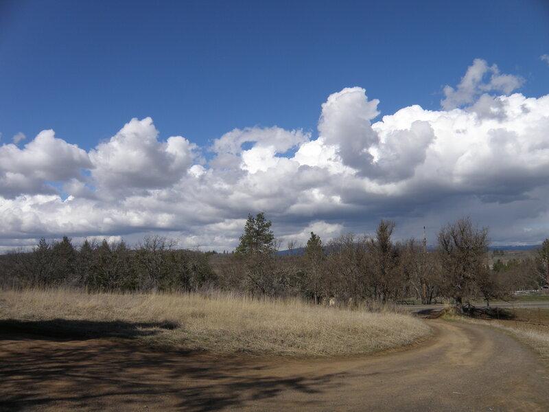 MAR 2021 / MINI #10 Clouds