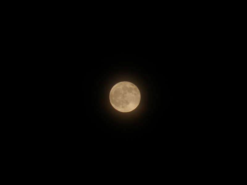 """Full """"Cold"""" Moon...12-10-11"""