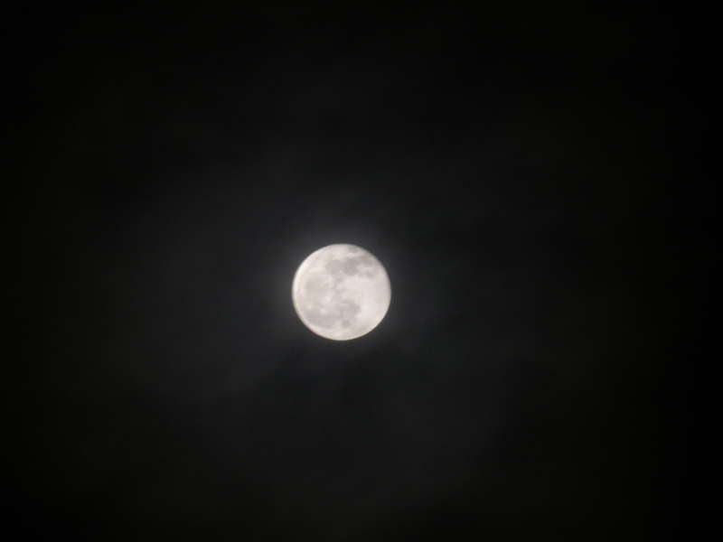 """Full  """"Cold""""  Moon...12-21-10"""