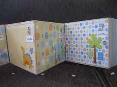 Baby accordian album