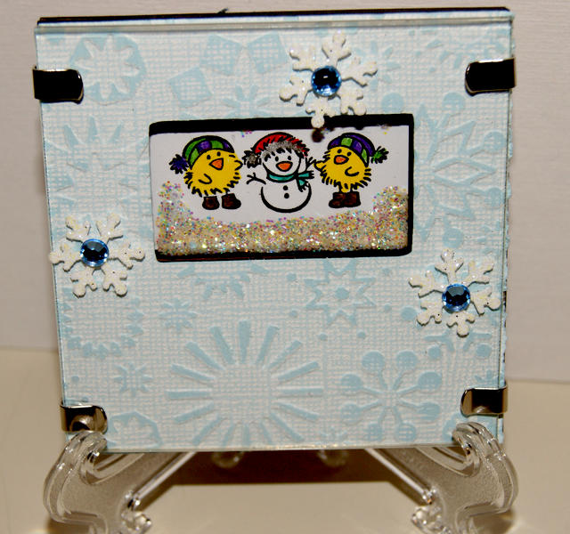 Winter Chicks Shadow Box Frame