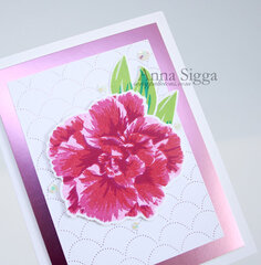 Set of simple floral cards