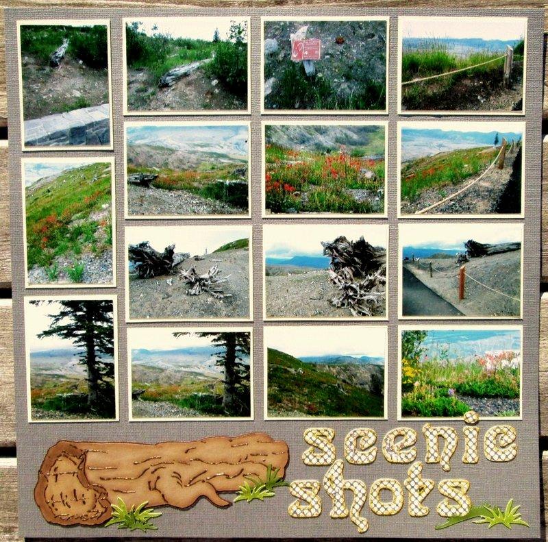 Scenic Shots