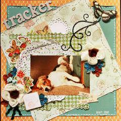 Tracker ~Scraps of Darkness~