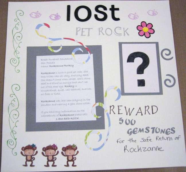 Lost Pet Rock