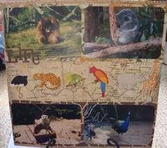 Zoo Life 2