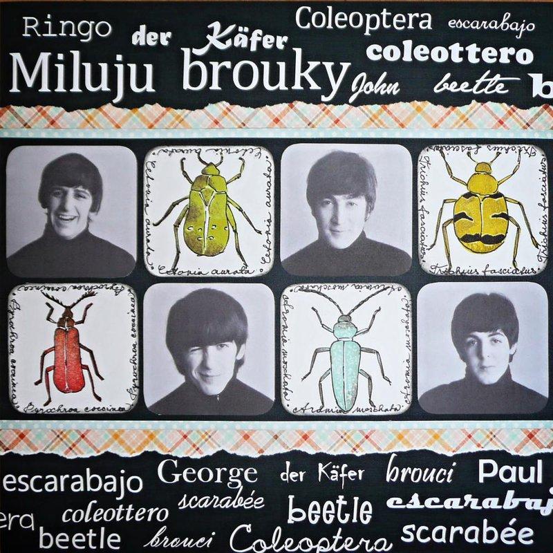 I love beetles