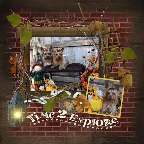 Time 2 Explore