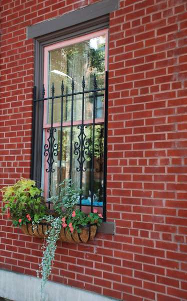 Pittsburgh Historical District House Window