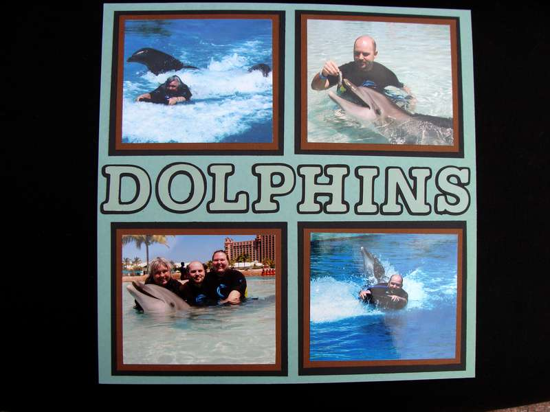 SWIM WITH THE DOLPHINS 2 - Right