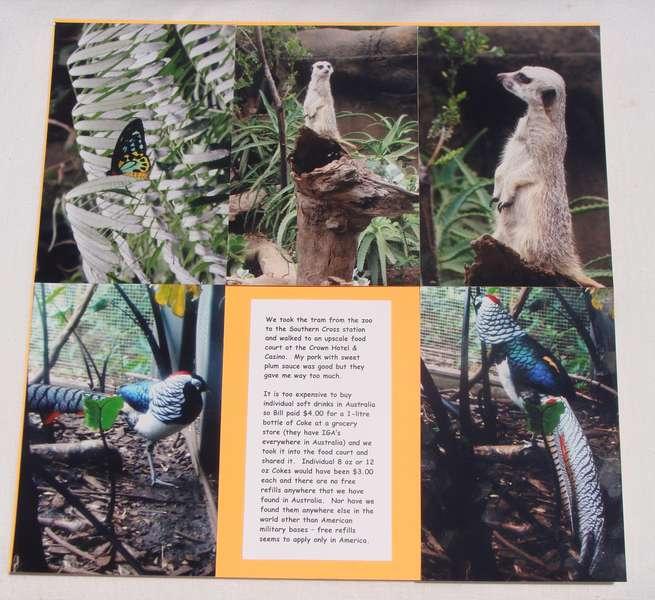 Melbourne, Australia Zoo - 6