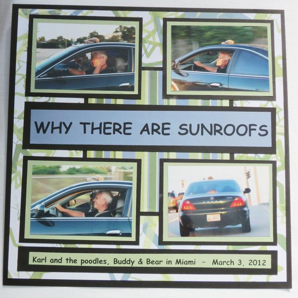 Why There are Sunroofs