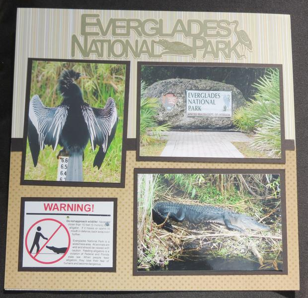 Florida Everglades - Title Page