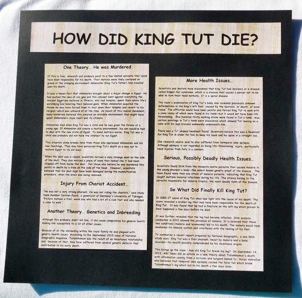 King Tut Exhibit 8 - Last Page