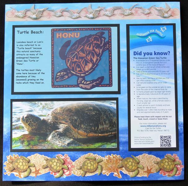 Hawaii - Turtle Beach RIght