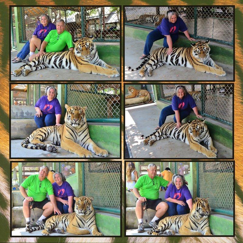 Page 328 - Volume Challenge- 2014 - Phuket, Thailand