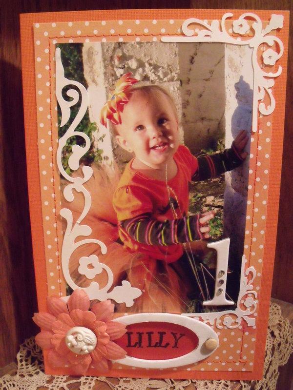 Lilly's first Birthday
