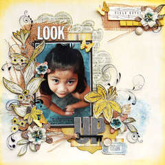 LOOK UP:  Scrap That! June Kit and CCG 145