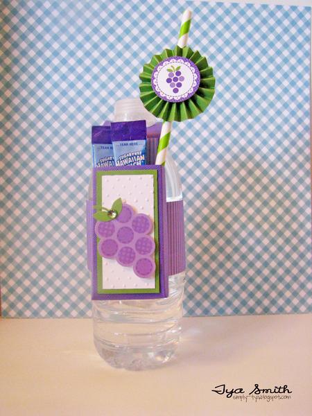 Flavored Water Bottle treat holder