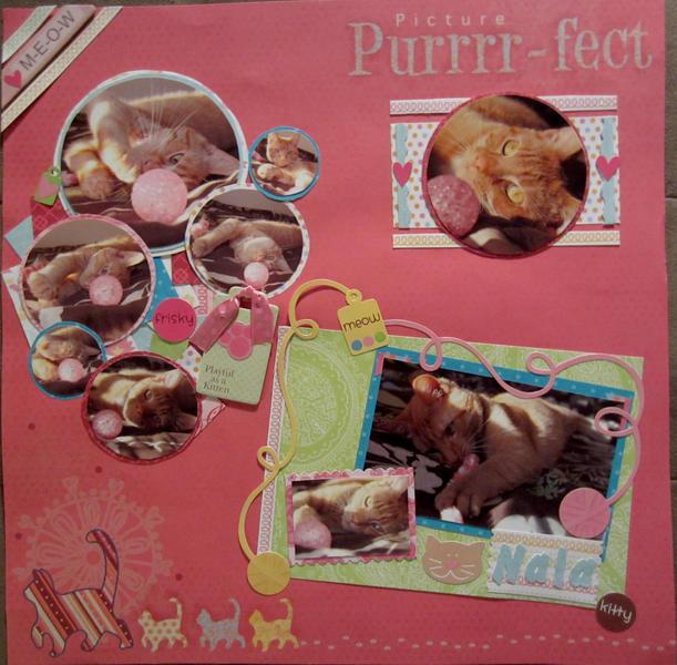 Picture Purrrr-fect