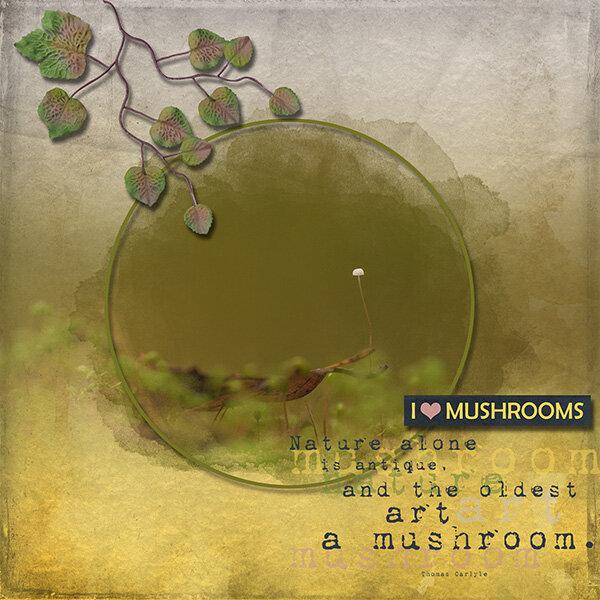 hunting mushrooms