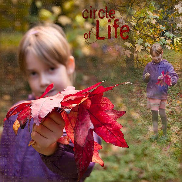 Circle of life_Val C Designs