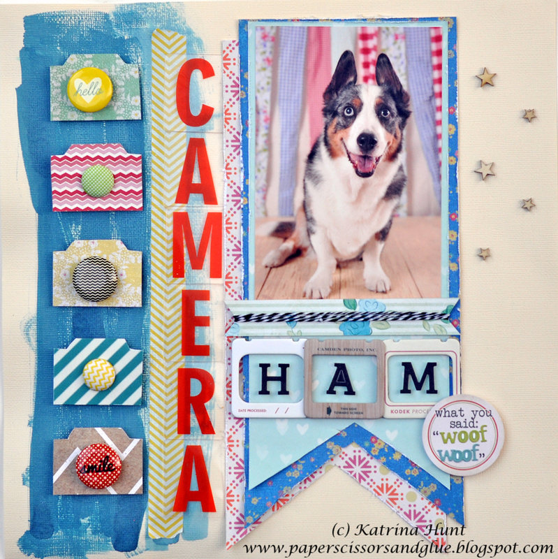 Camera Ham by Katrina Hunt