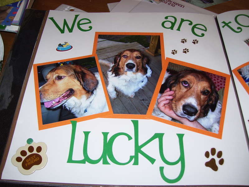 we are lucky 1