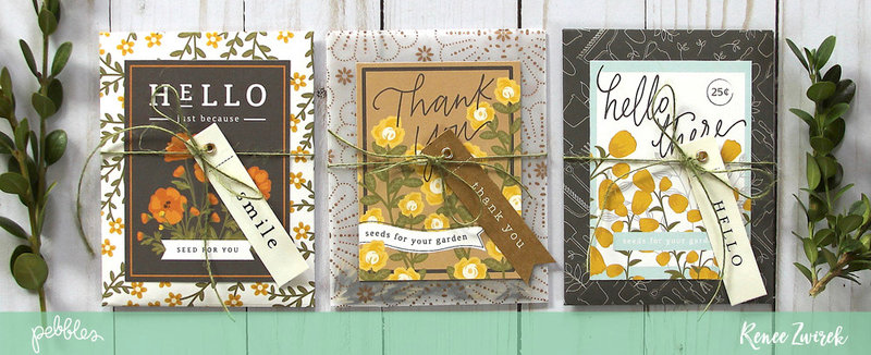 Seed Packet Quick Gift *Pebbles*