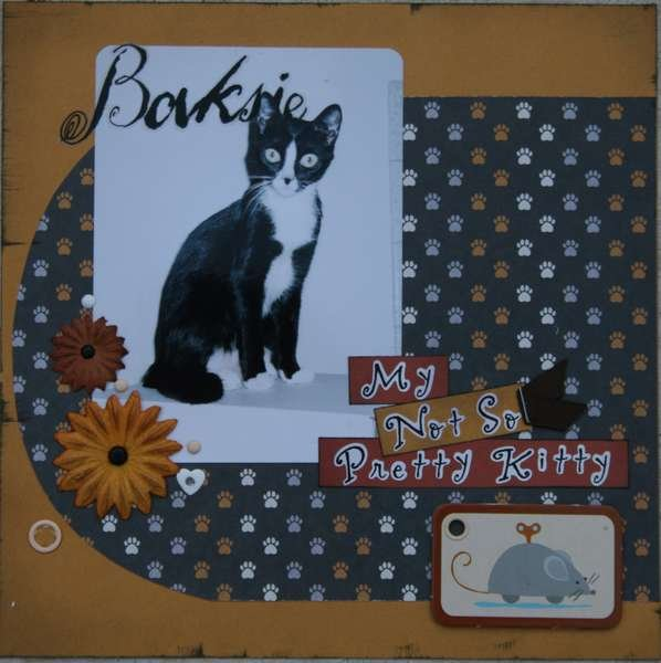 baksie, My Not So Pretty Kitty