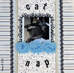 *** FUNTOOLAS*** CAT NAP