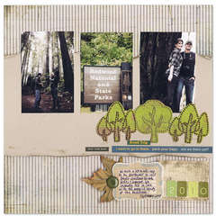 Redwoods Trip