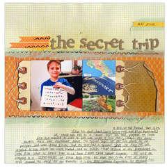 The Secret Trip