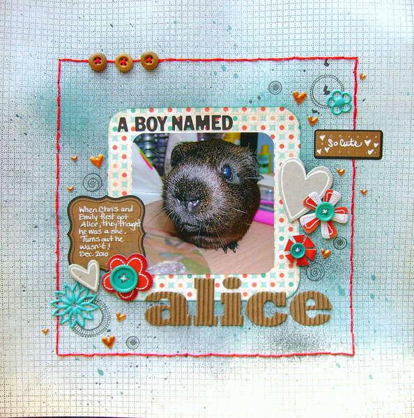 a boy named alice