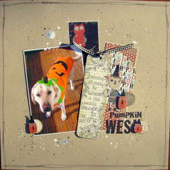 Pumpkin Wes