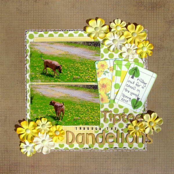 Tiptoe through the dandelions
