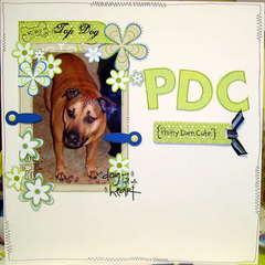 PDC {pretty darn cute}