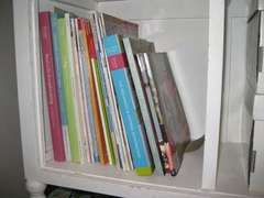 Left Cubby of Left Cabinet - 2009