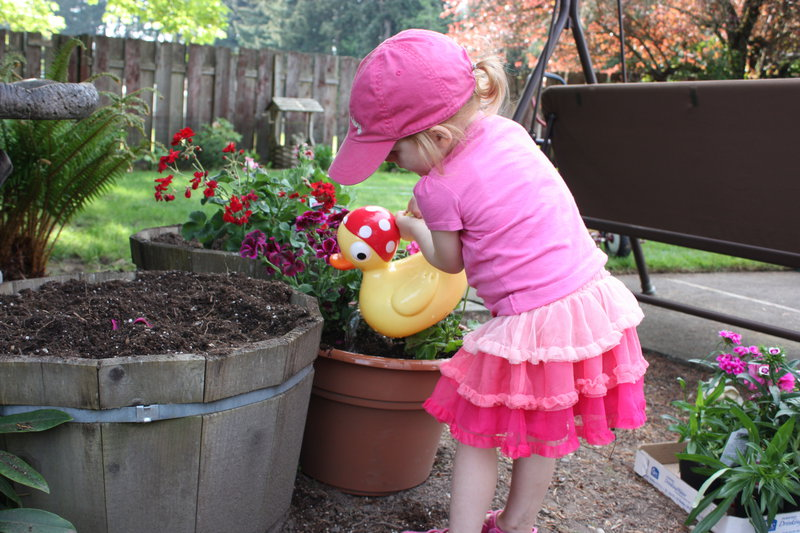 Granddaughter helping me plant annuals