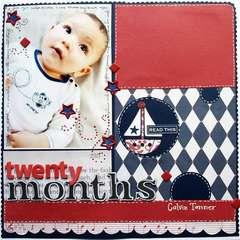 Twenty Months
