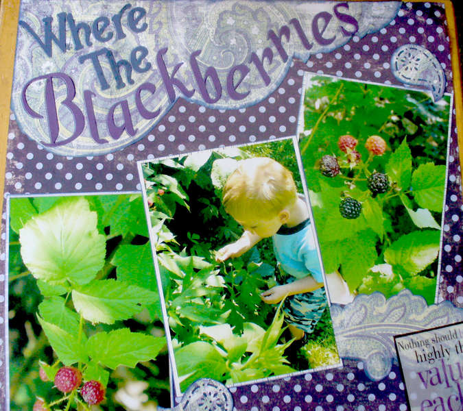 Where the blackberries grow...