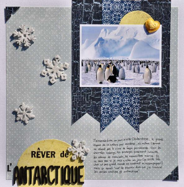 Dreaming of Antarctica