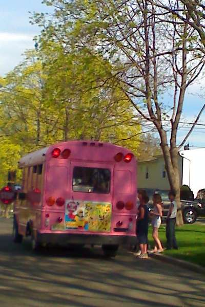 Recycled Pink Bus