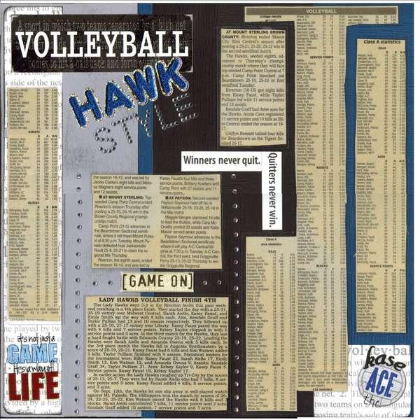 Volleyball Hawk-style