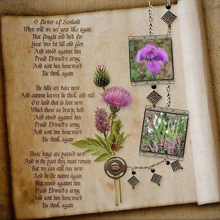 2014, Scotland - Isle of Skye Trip - Flower of Scotland